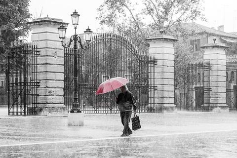 Rainy Venezia